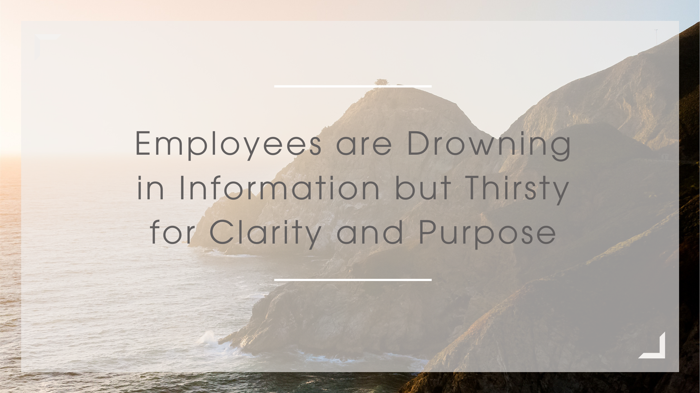 Employees are Drowning in Information but Thirsty for Clarity and Purpose